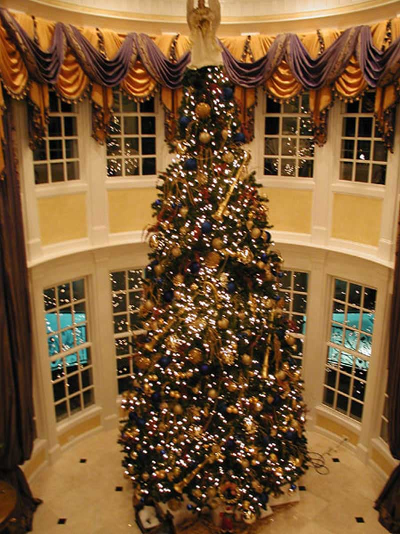 Inspired by the white house with 6 bdrms 8210 sq ft Large decorated christmas trees