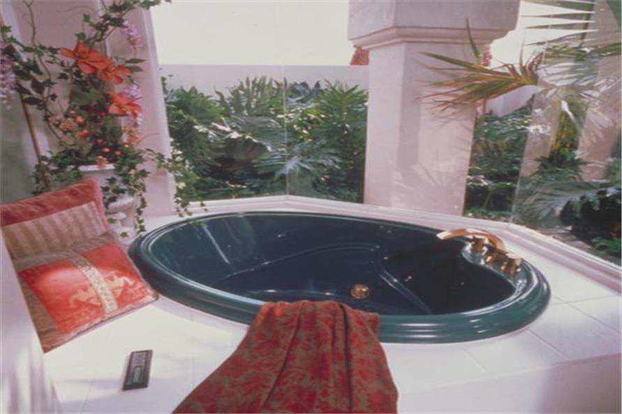 190-1007: Home Interior Photograph-Master Bathroom