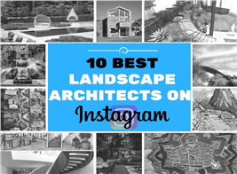 Montage of images illustrating landscape architects from Instagram