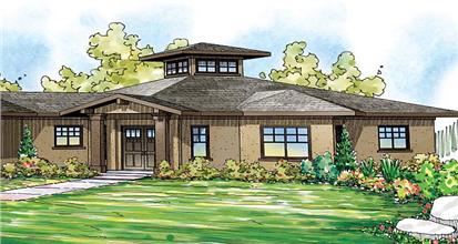 TPC style Geodesic House Plans