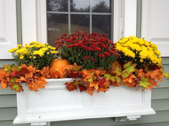 Fall-decorated window box