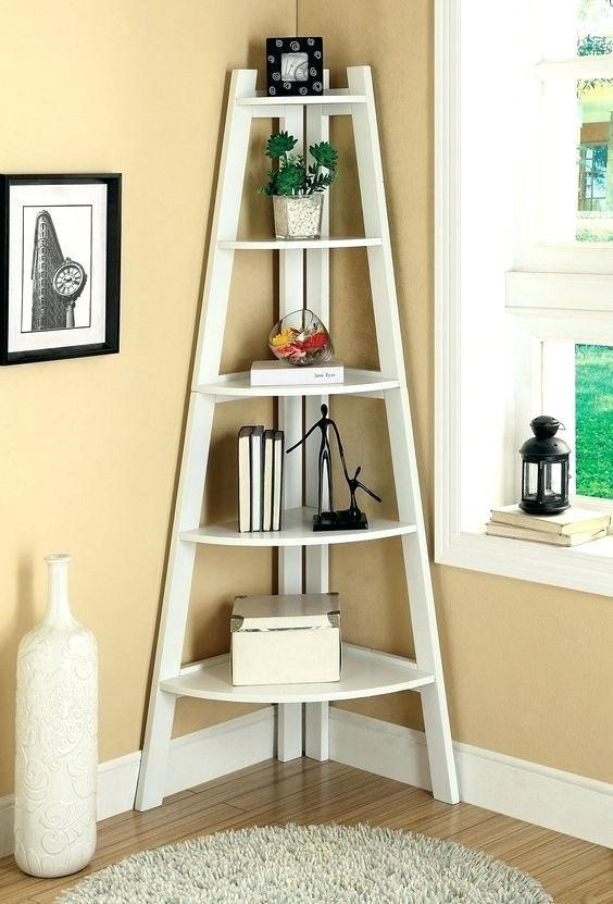 Combination book and display shelf in tiny awkward space in a living room