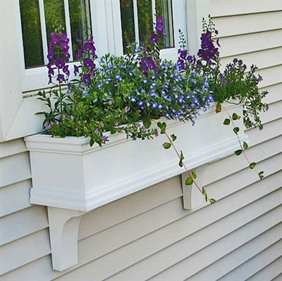 White window box with purple and blue flowers on the side of house