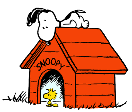 Snoopy looking down from the rooftop of his doghouse at Woodstock