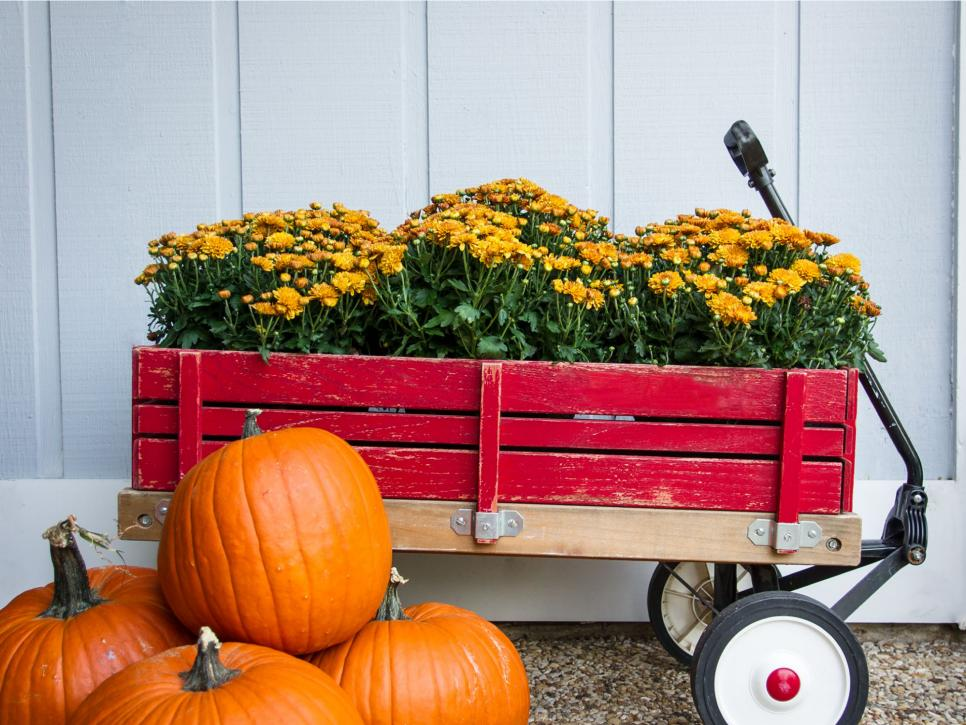 Wagon filled with fall flowers for autumn decorating
