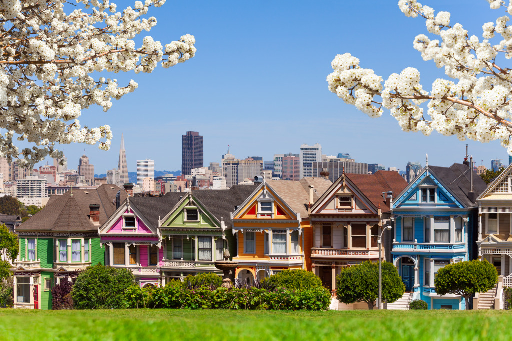 Colorful Painted Ladies in San Francisco