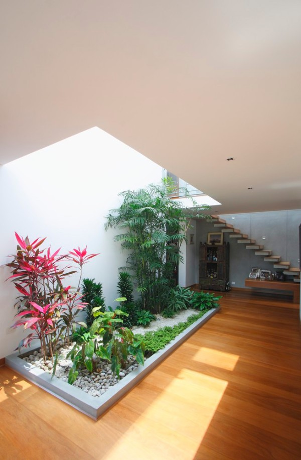 Indoor garden in the atrium of a house in Peru
