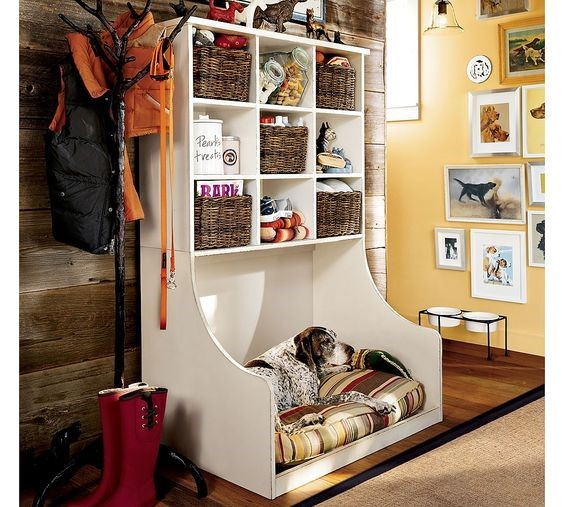 Pet area in the mudroom of acontemporary home