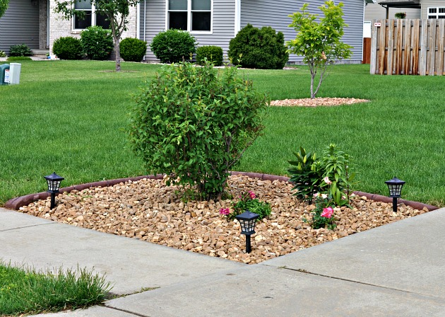 Attractive landscaping with shrubs and mulch at the intersection of sidewalks