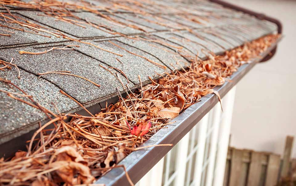 Image of clogged house rain gutter