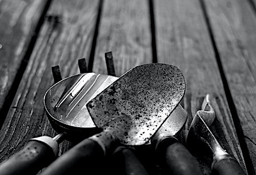A selection of small hand gardening tools on wood decking