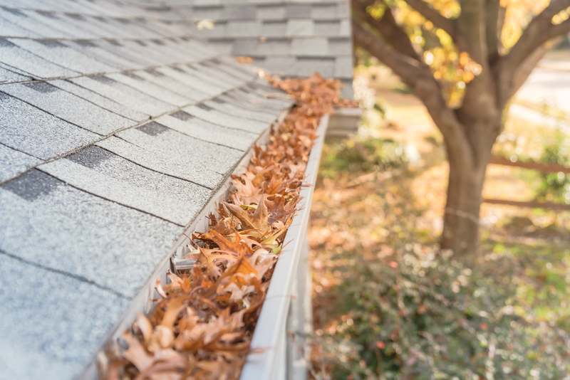 Roof gutter filled with autumn leaves, ready to be cleaned out
