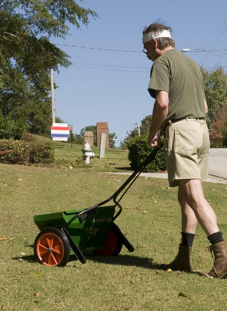 Fertilizing a home lawn with a walk-behind spreader in the fall