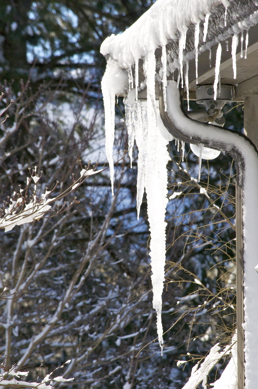 Ice built up in a house roof gutter and forming icicles