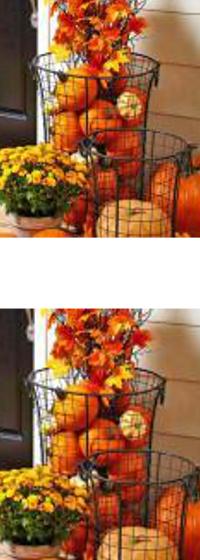 "Pumpkin ""floral"" baskets for the porch."