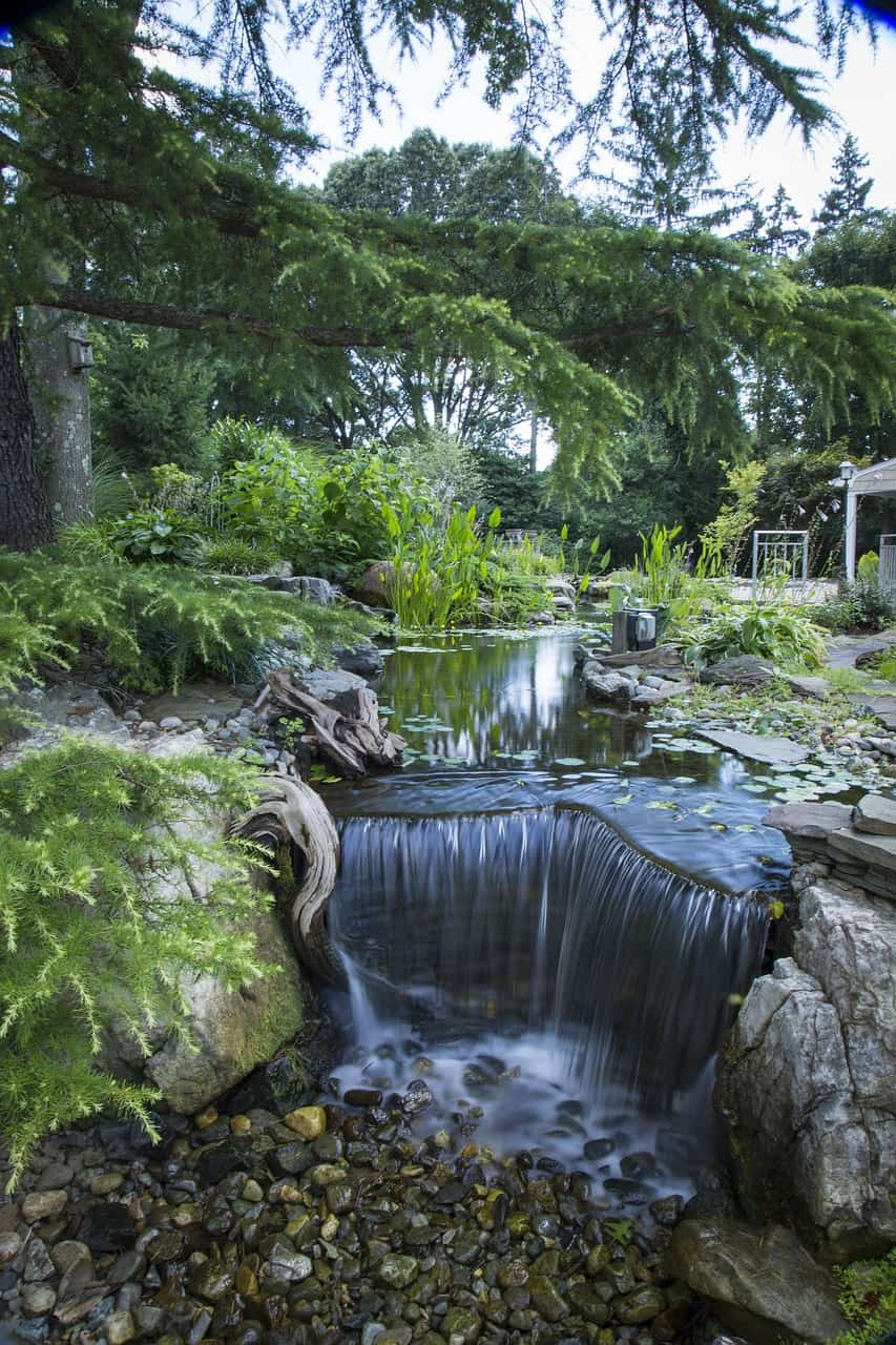 Backyard with waterfall and garden pond