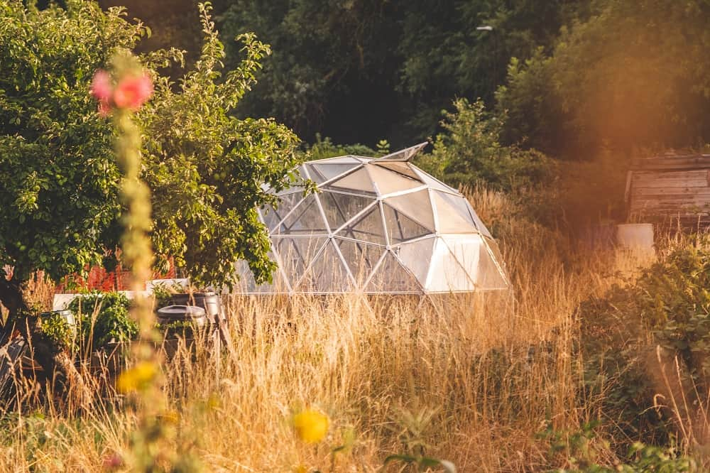 Greenhouse in geodesic form