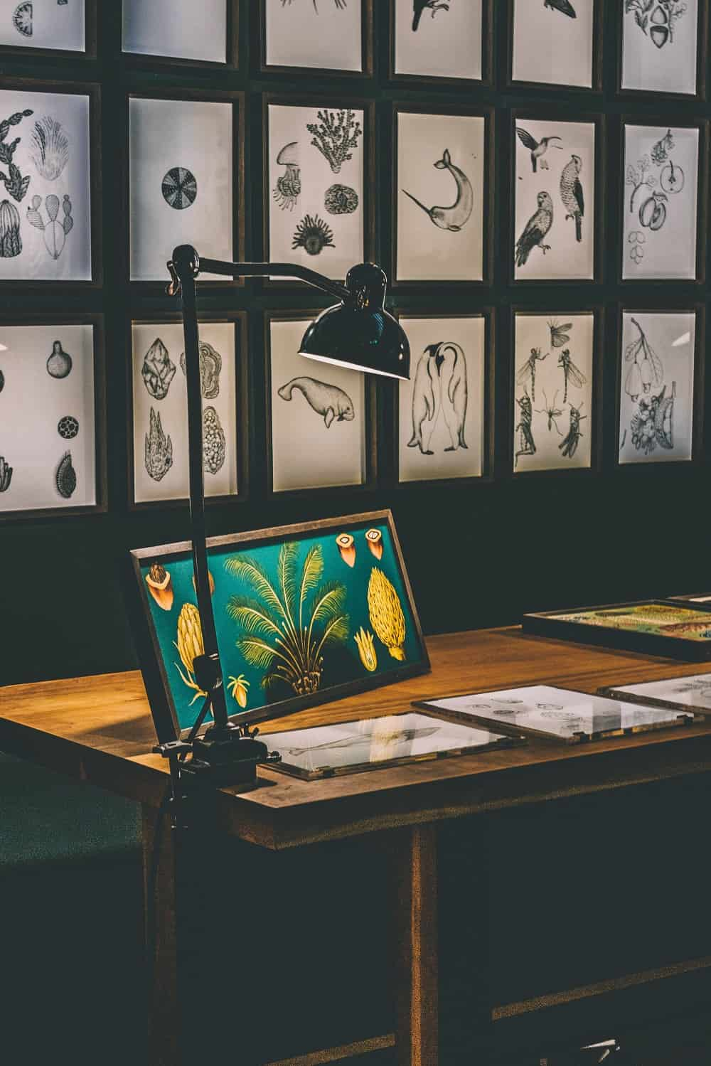 Framed illustrations spice up this home office and make it a conversation piece