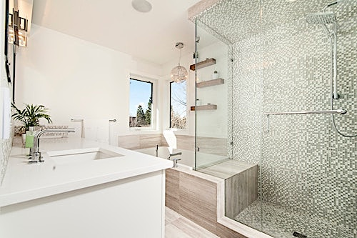 Modern shower with stylish grab bar