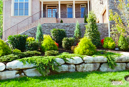 Why You Must Consider Evergreens In Your Landscape
